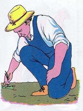 ORACIÓN DEL AGRICULTOR